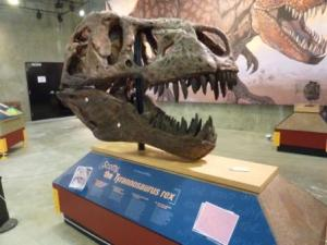 T-Rex Discovery Centre Eastend